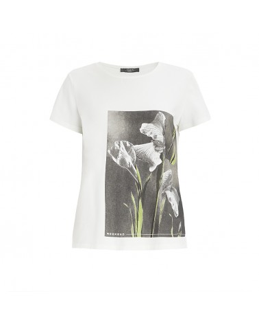T-shirt MAXMARA WEEKEND BENNY